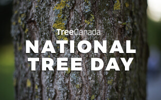 National Tree Day at Goodwill